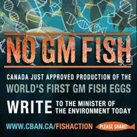 GM-Fish-approved-Write-the-Minister-FB_medium
